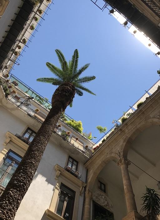 Palermo, Palme, Hinterhof