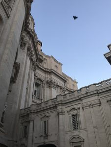 Vatikan mit Taube